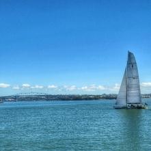 Auckland pier
